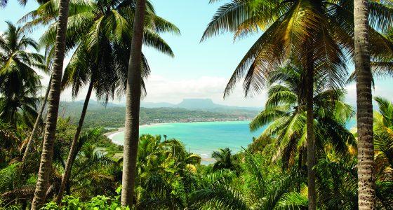 Palmer og hav på Baracoa Cuba