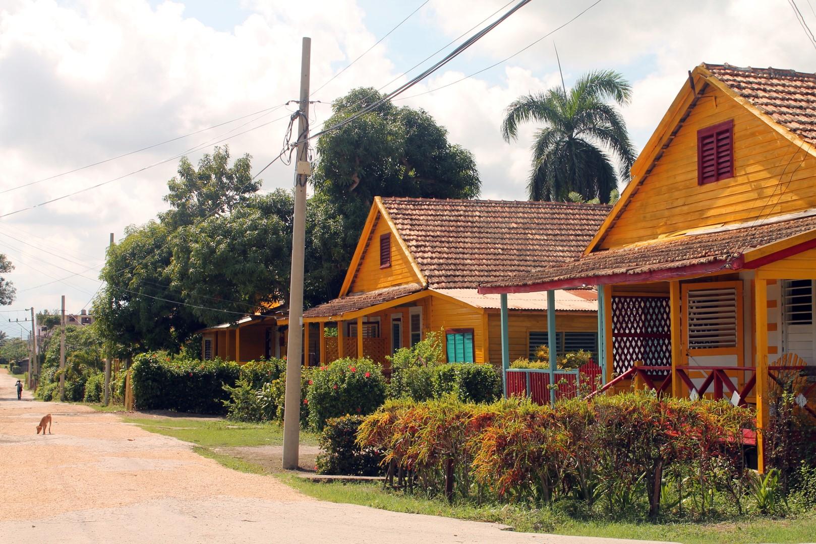 Preston, Cuba - OrkideEkspressen